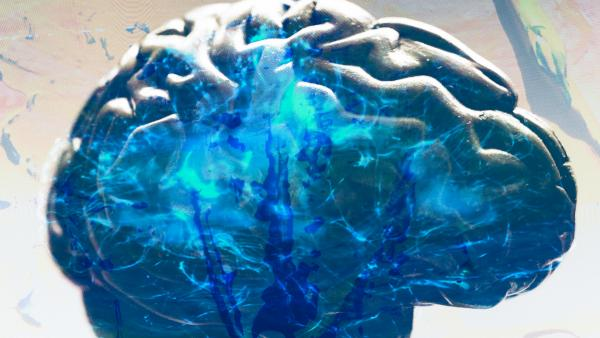 A brain alive with energy
