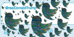 Twitterstorm of bots